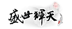 北京盛世辉天科技有限公司